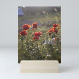 solstice Mini Art Print