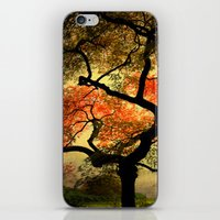 japanese iPhone & iPod Skins featuring Japanese by Philippe Sainte-Laudy
