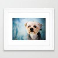 puppy Framed Art Prints featuring Puppy by Jennifer Renner