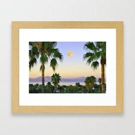 Palms on Full Moon Framed Art Print