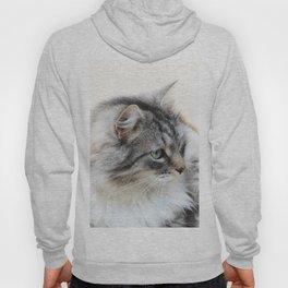 Silver Cat Hoody