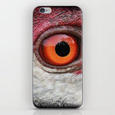 Eye Of The Sandhill Crane iPhone & iPod Skin