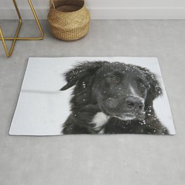 Black Dog in the Snow Rug