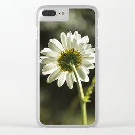 Daisy Light Clear iPhone Case