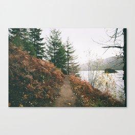Happy Trails XVI Canvas Print