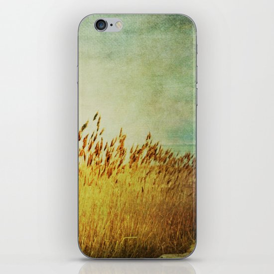 Winter Gold iPhone & iPod Skin