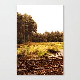 waste land Canvas Print