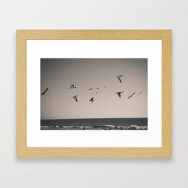 Fly Away! Framed Art Print