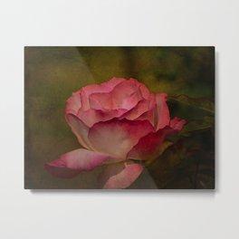 Rose Textures Metal Print