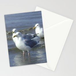 Seagull Heaven Stationery Cards