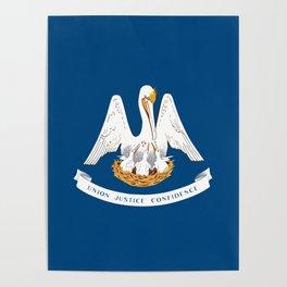 Louisiana State Flag Poster