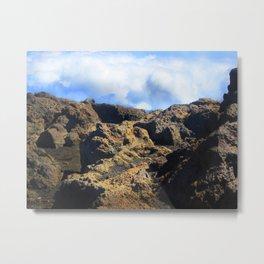 Minature Rock Landscape Metal Print