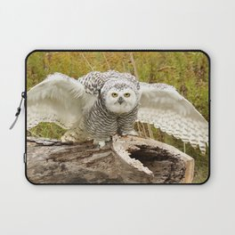 Laying down the law Laptop Sleeve