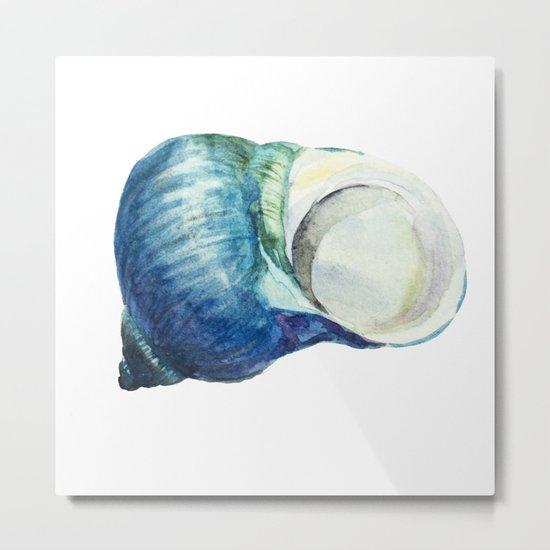 Blue Shell Metal Print
