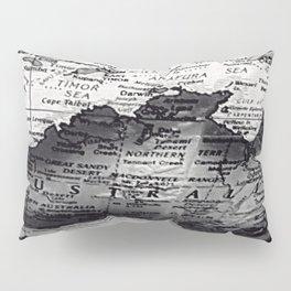 Darwin Pillow Sham
