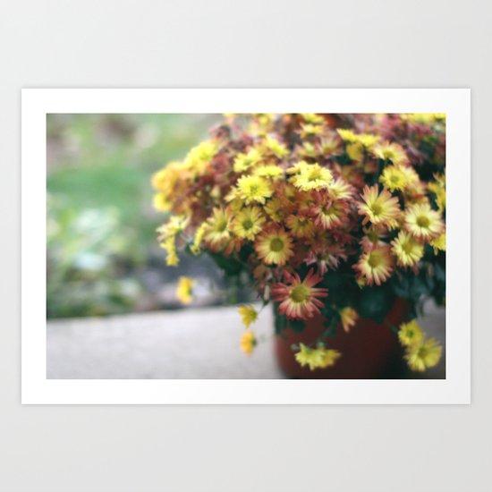 Yellow Fall Flowers Art Print