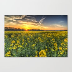 The April Field Canvas Print