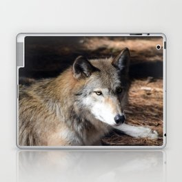 The Eyes of a Wolf Laptop & iPad Skin