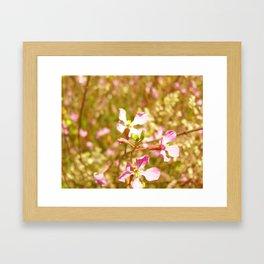 Fort Brag Flowers IV Framed Art Print