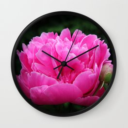 Cuddles Wall Clock