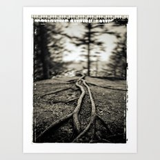 The forest  story Art Print