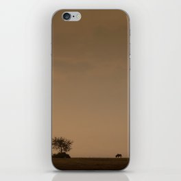 Lone wildebeest grazing in South Africa at sunset iPhone Skin