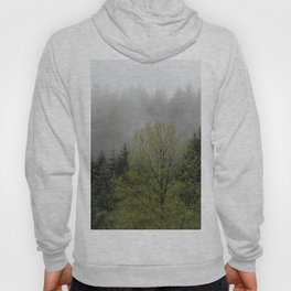 Foggy Forest Wanderlust Adventure - 114/365 Nature Photography Hoody