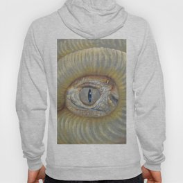 Scary Dragon Eye Weird Reptilian Monster Eye Surreal pastel drawing Fantasy Book illustration Hoody
