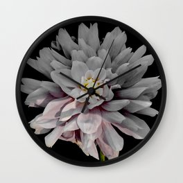 Grey Dahlia Bloom With Pink Wall Clock