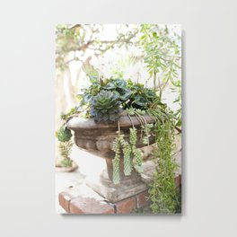 Overflowing Succulents Metal Print