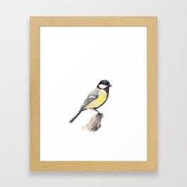 Great tit Framed Art Print