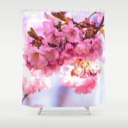 Pink Japanese Cherry Blossom, Sakura Shower Curtain