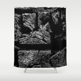 Railroad Ties Shower Curtain