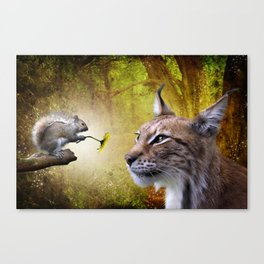 Canadian Lnx and Squirrel Canvas Print