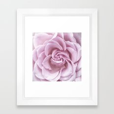 Pink Heart of a rose Roses Flowers Framed Art Print