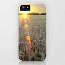 Sunrise on a wheat field iPhone Case