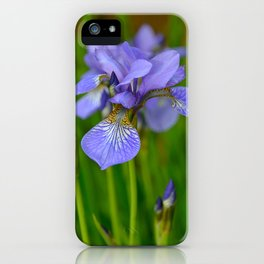 Siberian Iris by Teresa Thompson iPhone Case