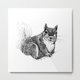 Squirrel drawing Metal Print