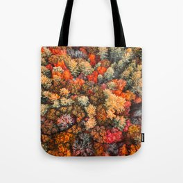 autumn high angle view of a tree Tote Bag