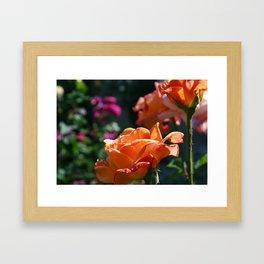 Flowers_3 Framed Art Print