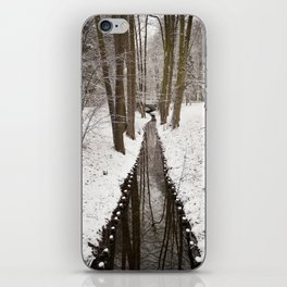 Stream and trees in winter Park iPhone Skin