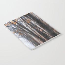 Misty road Notebook