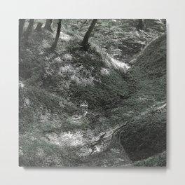 ps t 003 Metal Print