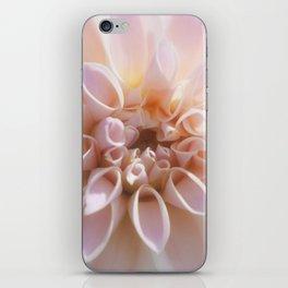 Dahlia Pink (1) iPhone Skin