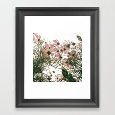 FLOWER 044 Framed Art Print