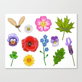 Nature collection Canvas Print