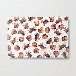 scallop Crab pattern design white Metal Print