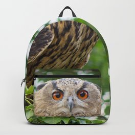 The owl is watching you Backpack