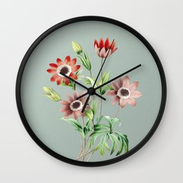 Vintage Broad Leaved Anemone Botanical Illustration on Mint Green Wall Clock