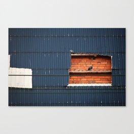 Perched 1 Canvas Print